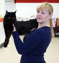 Светлана Майструк - инструктор-фелинолог породы Мейн-кун
